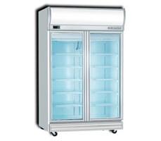 Tủ đông 2 cánh kiếng Display freezer 2D/DF-S-EV