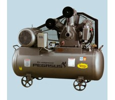 Máy nén khí dây đai PEGASUS TMW-0.9/16/ZG/CS